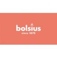 Bolsius International B.V.