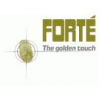 Forte Benelux BV